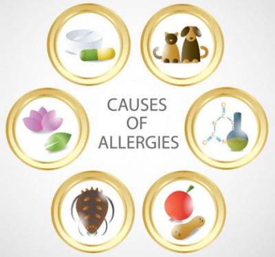 causes of allergies