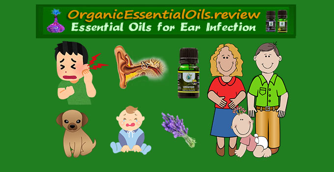 best essential oils for ear infection