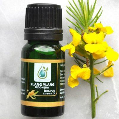 Ylang Ylang 3 Essential Oil